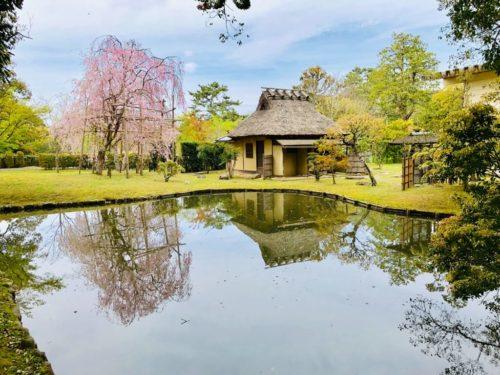 奈良国立博物館 春季庭園特別公開。