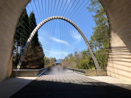吊り橋の先には、森林に囲まれた美術館が。