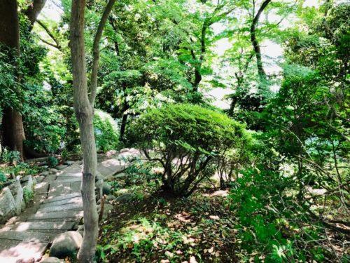 五島美術館庭園。 急な崖を、曲がりくねった石段で降りていく。
