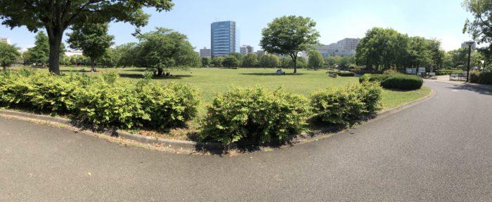木場公園の広大な芝生広場。
